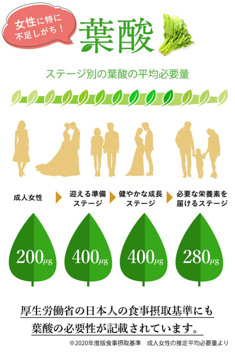 女性に特に不足しがち!葉酸ステージ別の葉酸の平均必要量